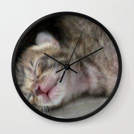 Cute newborn kittens Wall Clock