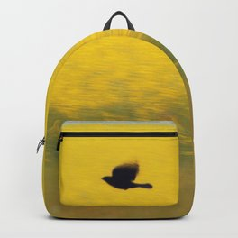 Blackbird over the canola field Backpack
