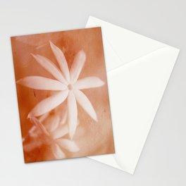 Wild Jasmine Stationery Cards