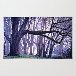 old trees in the middle of the forest Rug