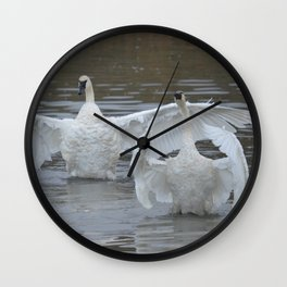 Swan Dance - Two out of Three Wall Clock