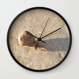 Snail's Pace Wall Clock