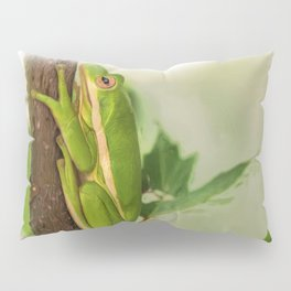 Painted Green Tree Frog Pillow Sham