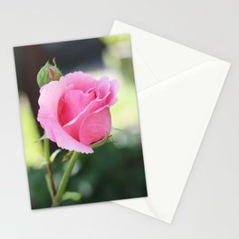 Soft Pink Rose Bud Stationery Cards