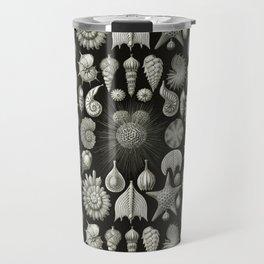 Ernst Haeckel - Thalamphora (Seashells) Travel Mug
