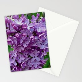 Lilac Blooms Stationery Cards