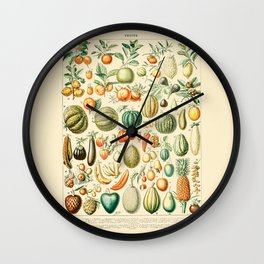 Autumn Harvest // Fruits by Adolphe Millot 19th Century Pumpkins Science Textbook Artwork Wall Clock