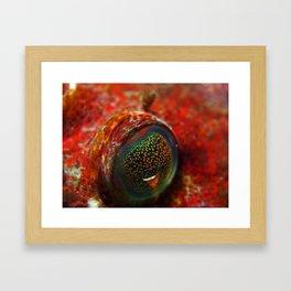 Autumn Eye Framed Art Print