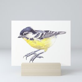 Tit bird Mini Art Print