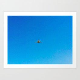 Friendly Skies Art Print