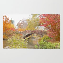 Fall in Central Park, NYC Rug