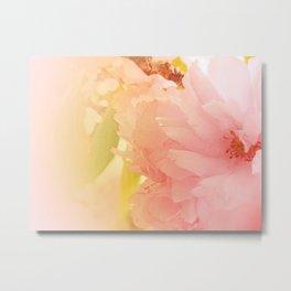 Cherry Blossom Glow Metal Print