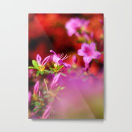 Colors Metal Print