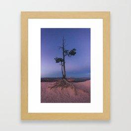 Bryce Canyon's lone wanderer Framed Art Print