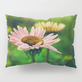 Daisy VI Pillow Sham