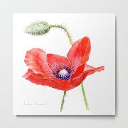 Red Poppy by Teresa Thompson Metal Print
