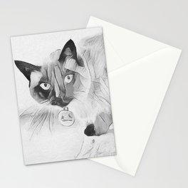 Peek A Boo Kitty Stationery Cards