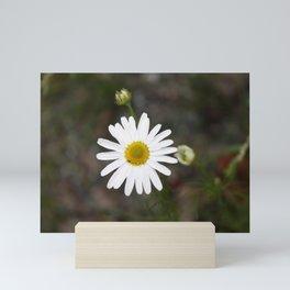 One Daisy Mini Art Print