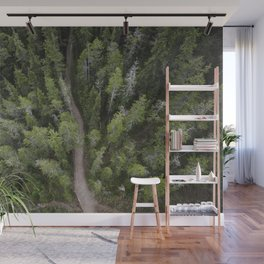 Forest Ariel Photography | Nature | Landscape Photography | Woods Wall Mural