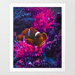 Keep Swimming Art Print