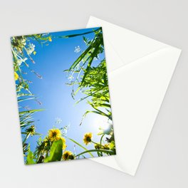 Sunny Summer Stationery Cards