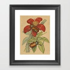 Giant Beetles Framed Art Print