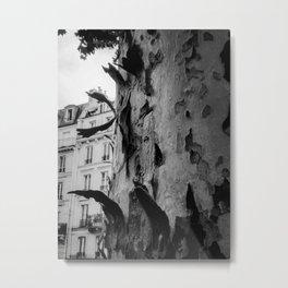 Paris in the fall Metal Print