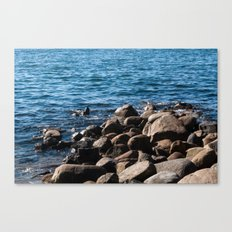 Rocks on the Water Canvas Print