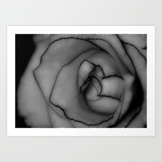 Charcoal Rose Art Print