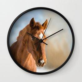 Brown Horse Winter Sky Wall Clock