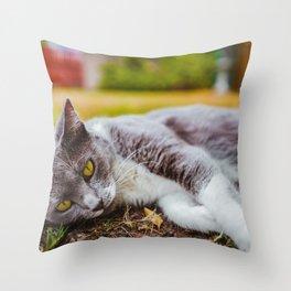 Cat by Seb Thomas Throw Pillow