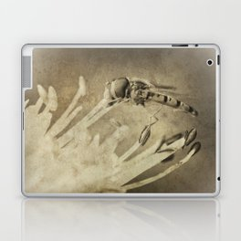 An Old Hoverfly Laptop & iPad Skin