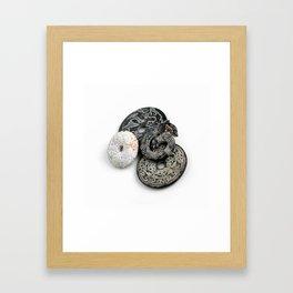 Jade Black And White Framed Art Print