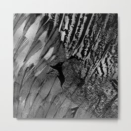 Abstract Feather and Bird Composition Metal Print