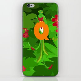 q for quetzal iPhone Skin