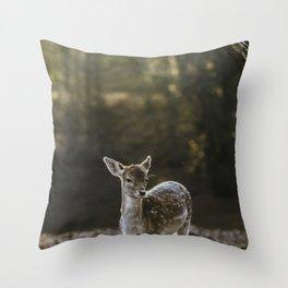 BULK ON GROUND NEAR TREE Throw Pillow