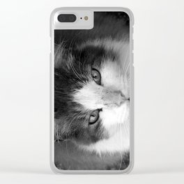 Chester Clear iPhone Case
