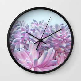 Sweet Succulents Wall Clock