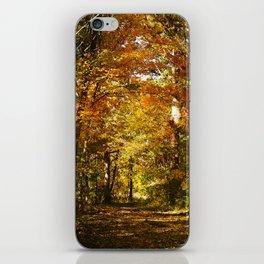 Woods Lake Trail iPhone Skin