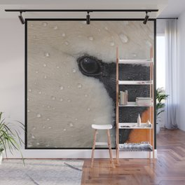 Mute Swan in Winter - CloseUp Wall Mural