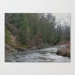 Outdoors, Rifle River, Nature, Adventure, Fishing, Relaxation Canvas Print