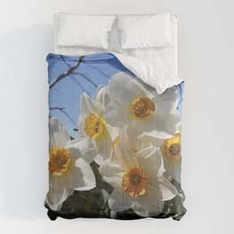 Sunny Faces of Spring - Gold and White Narcissus Flowers Comforters