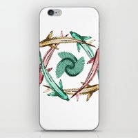 circle iPhone & iPod Skins featuring Circle by DebS Digs Photo Art