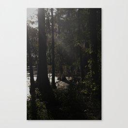 dusk at dawn Canvas Print