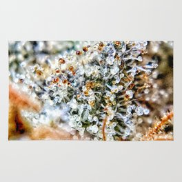 Top Shelf Diamond OG Strain Buds Calyxes Amber Trichomes Close Up View Rug