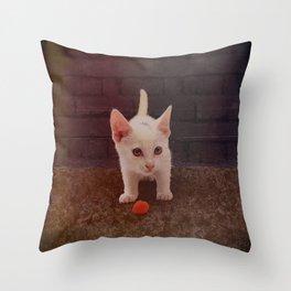 Alley Kitten Throw Pillow