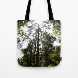 Hoop pine Tote Bag