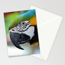 Take My Picture Please Stationery Cards