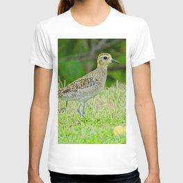 Pacific Golden Plover T-shirt