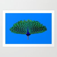 peacock Art Prints featuring Peacock by Whimsy Notions Designs